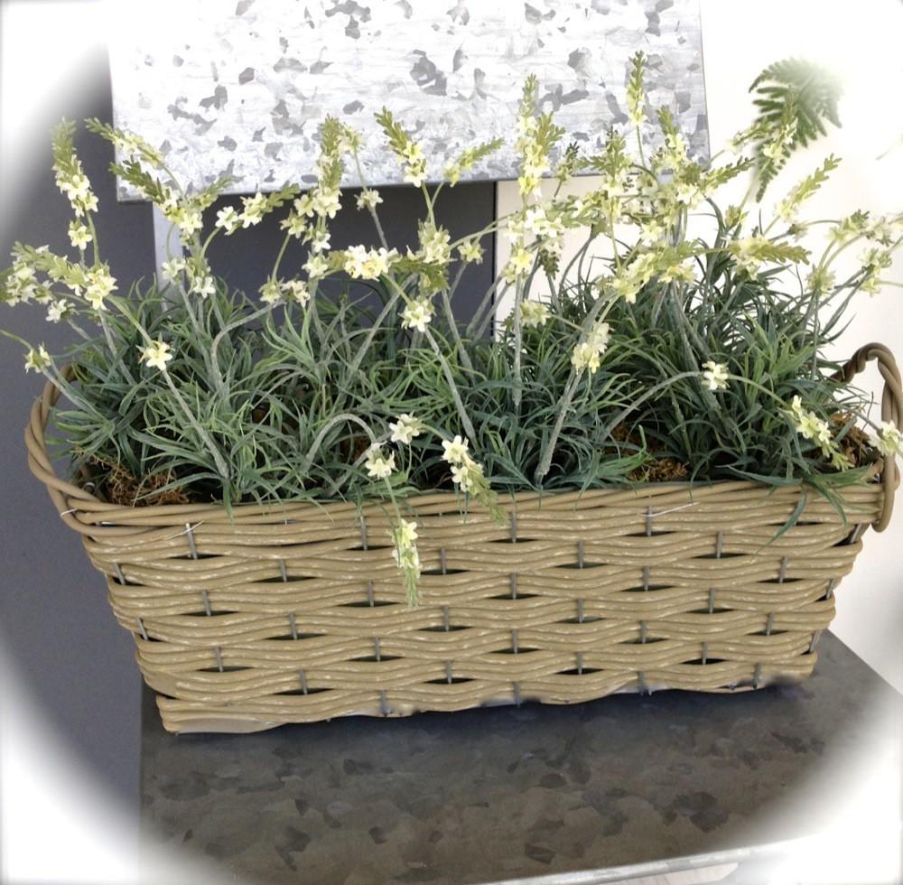 Tags Bloembak Balkon Planten Bloembakken Planten Bloemen