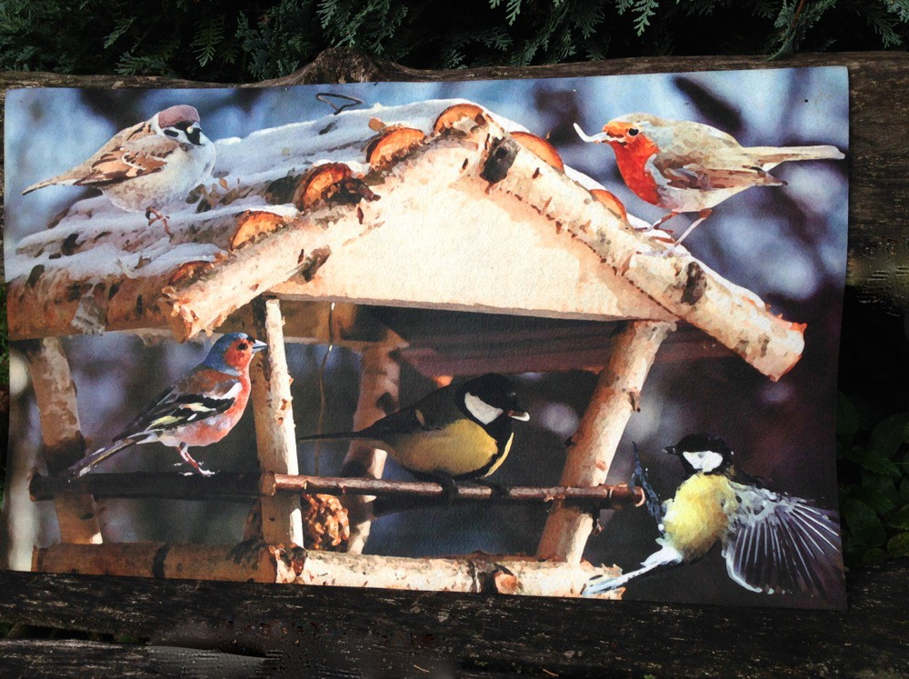 Tags Deurmat Bird Feeder Vuil Vriendelijke Mat Deurmat